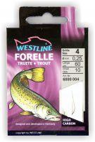 Angelhaken Forelle 10 Stück Westline Forellenhaken