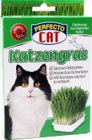 Katzengras ca. 100g Grassaat
